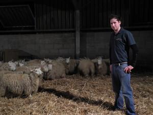 Lambing 2013 018