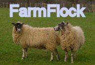 farmflock